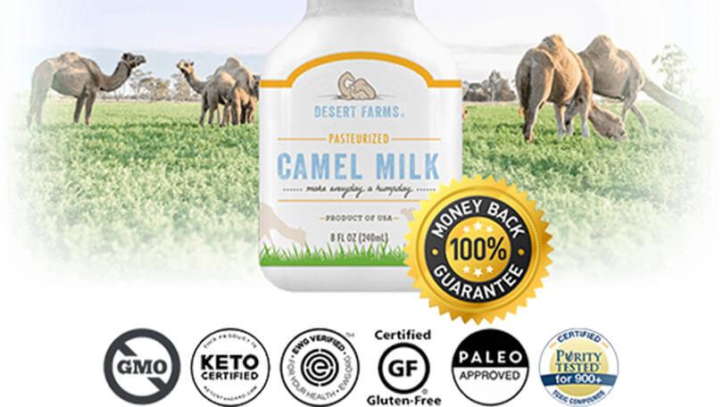 desert farms camel milk review