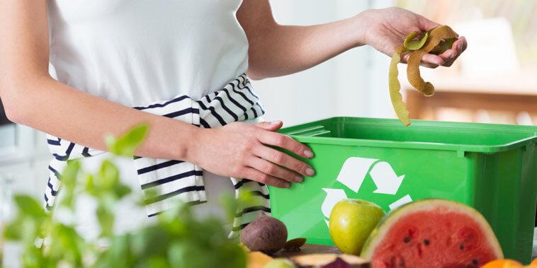 Food Wast compost bin