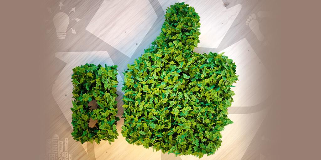 Food Waste green thumb