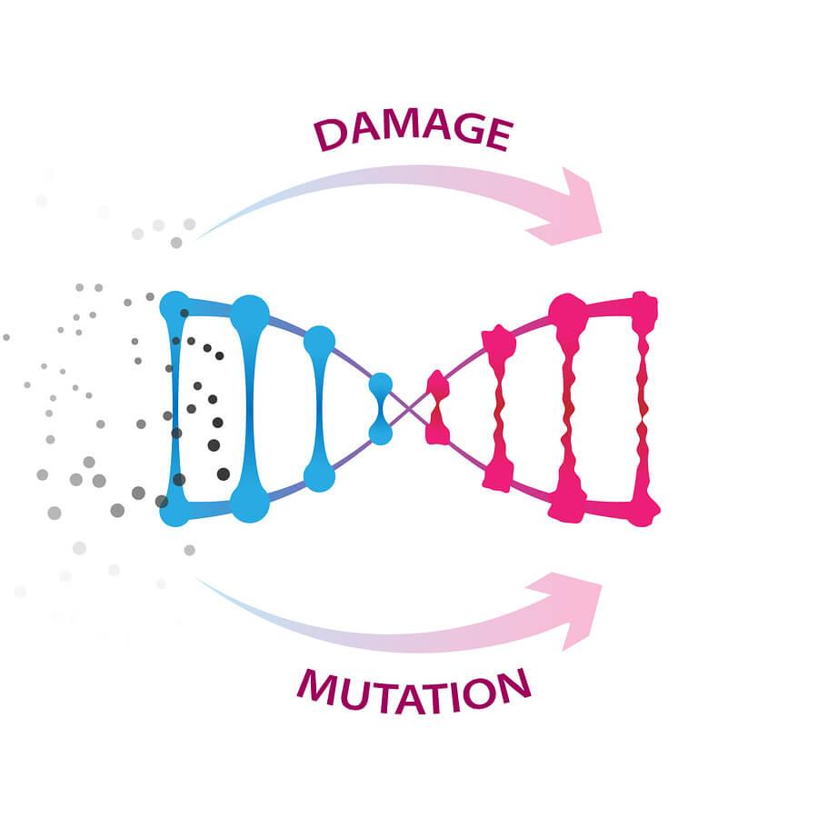 DNA damage helix strand