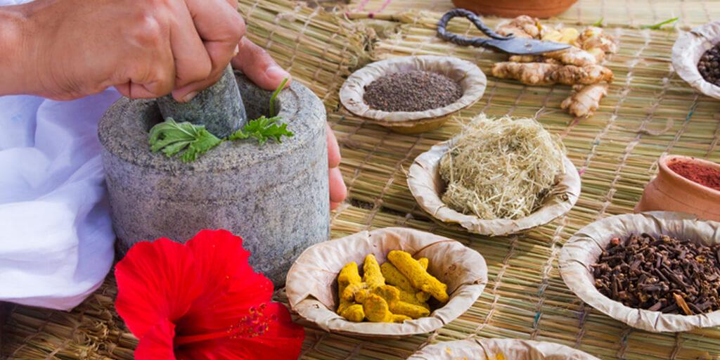 Healing Herbs with Medicinal Properties