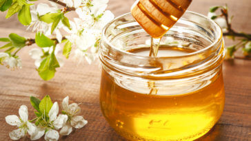 Manuka honey feature