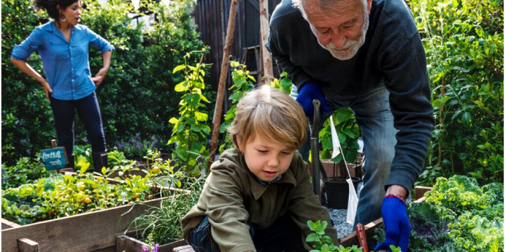 10 Surprising Health Benefits of Gardening