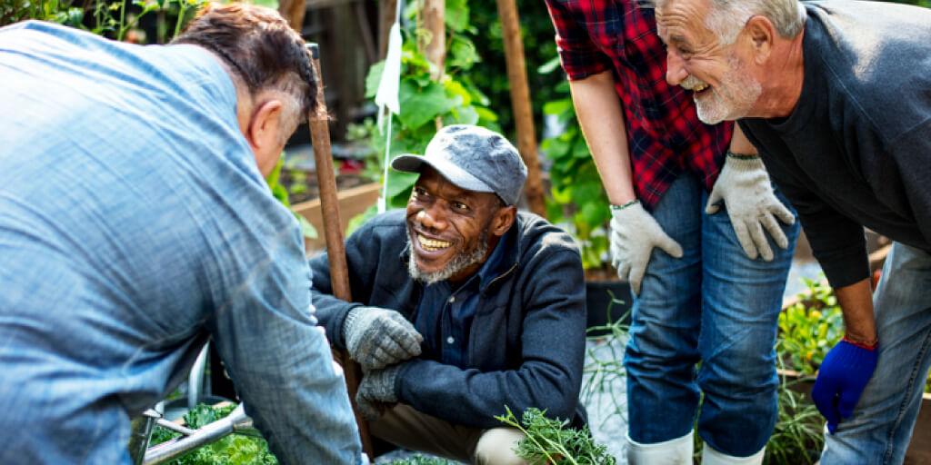 Improve Your Mental Health through Gardening