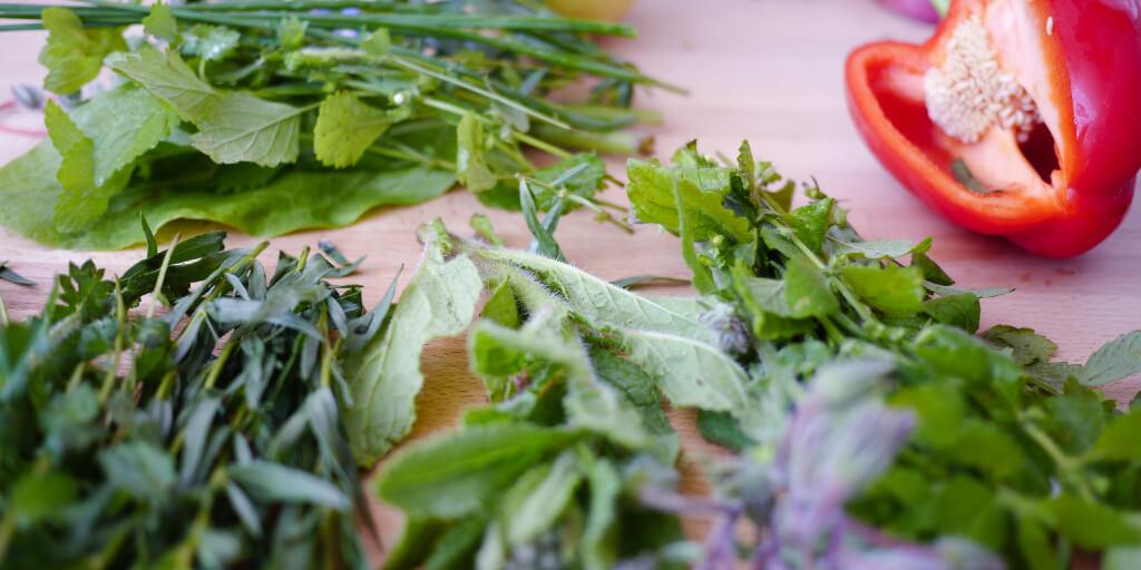 Organic Farming_2 benefits