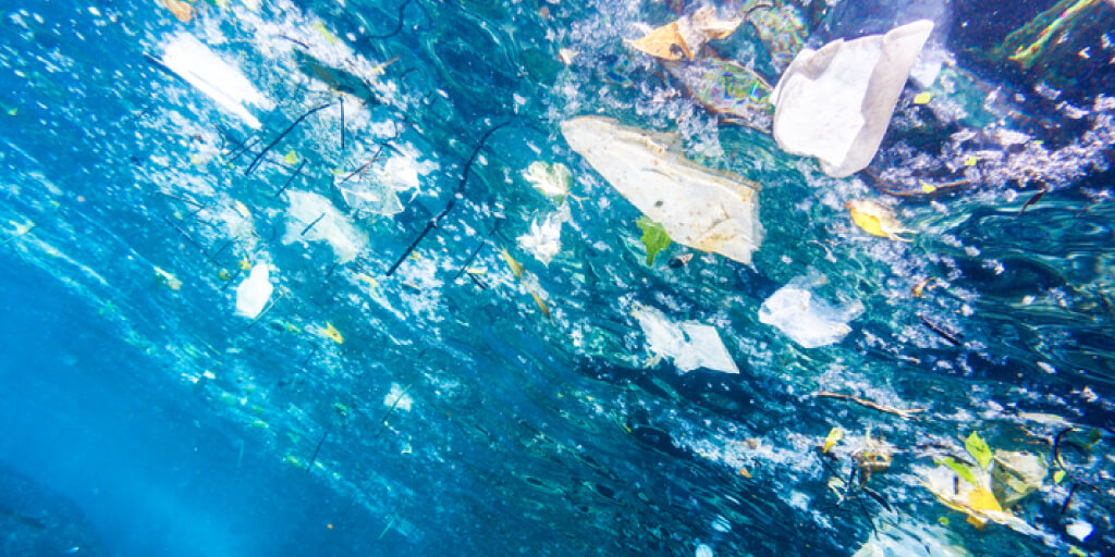 Top 10 Ways to Reduce Plastic Pollution
