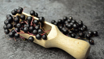 Benefits of Elderberry