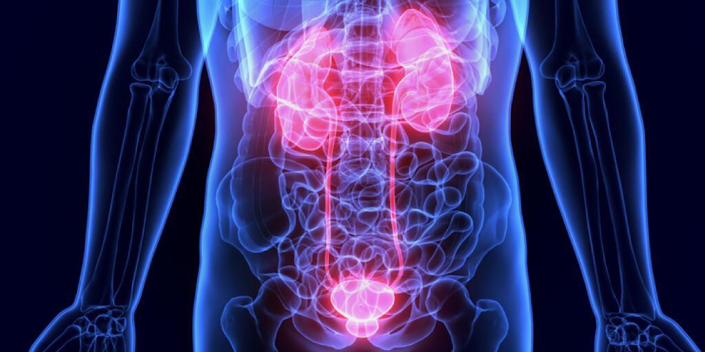 Can Apple Cider Vinegar Affect Your Kidneys