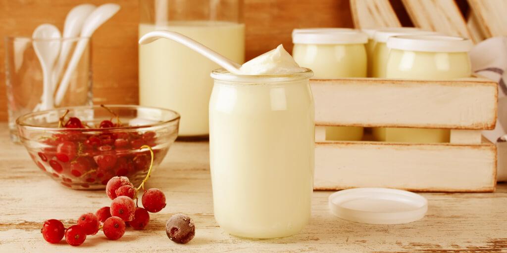 Homemade Yogurt_How to Make