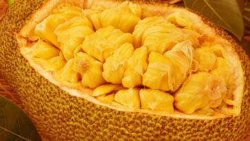 Jackfruit Benefits_Title