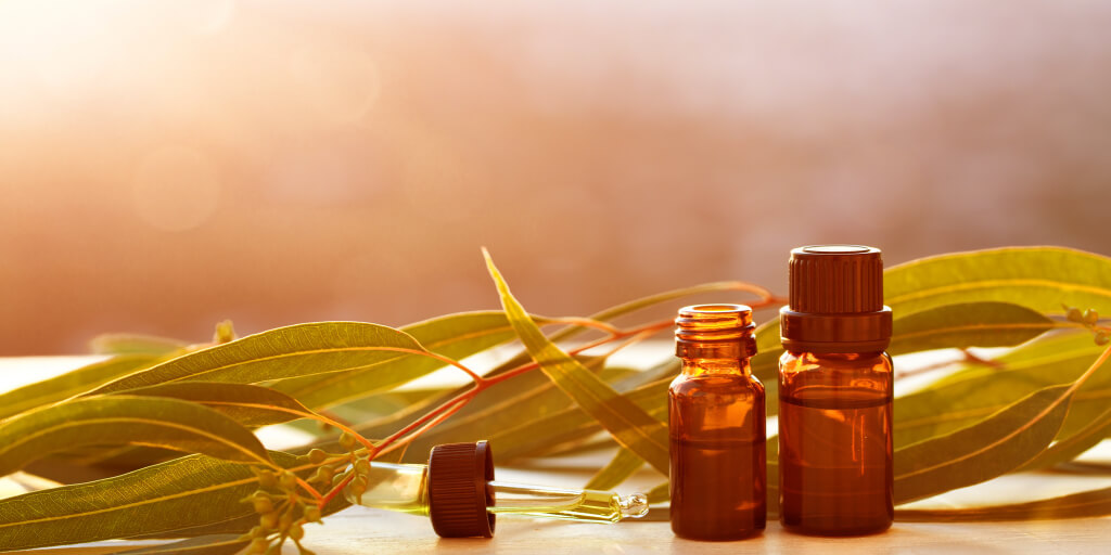 Top 7 Eucalyptus Oil Benefits and Uses_Top 7