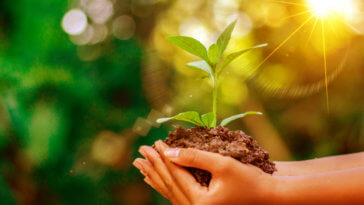 7 Instant Ways to Naturally Be More Environmentally Friendly_Title