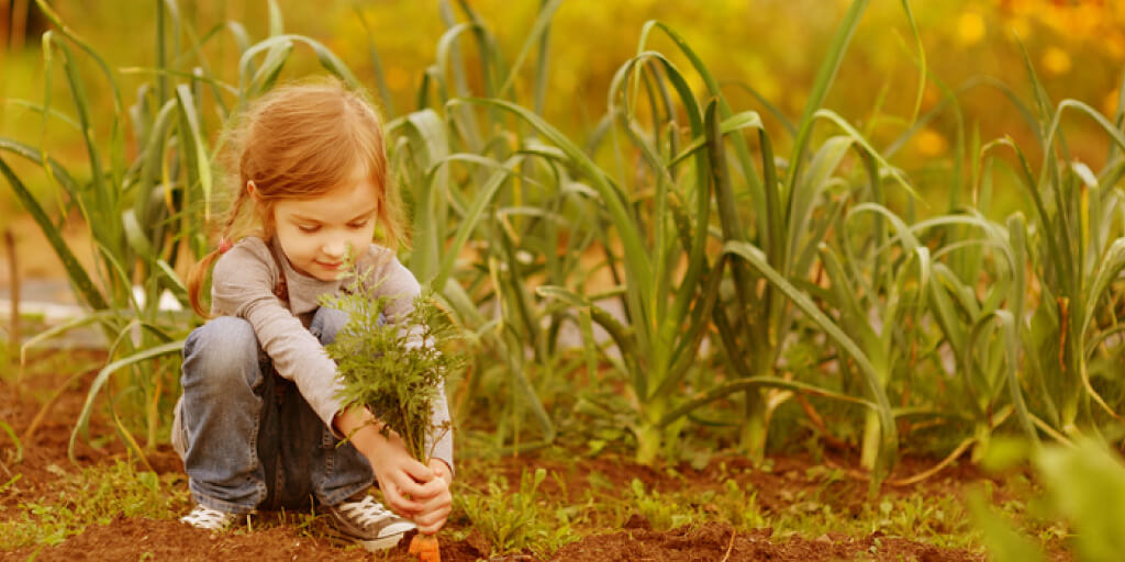Health Benefits of a School Garden & How to Start One_Benefits