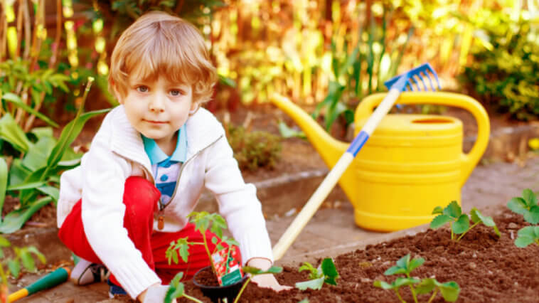 Health Benefits of a School Garden & How to Start One_Title