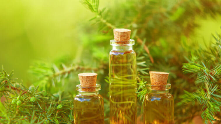 How to Reap Instant Tea Tree Oil Benefits_Title